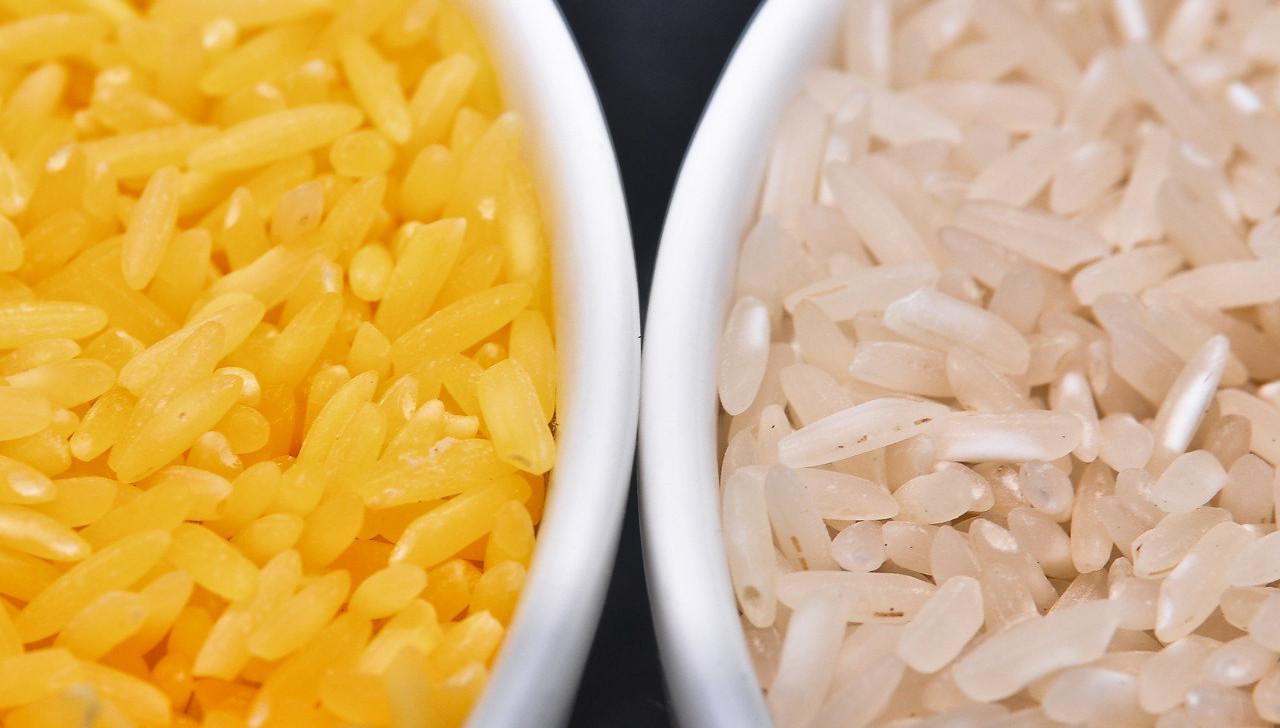 Goldener Reis