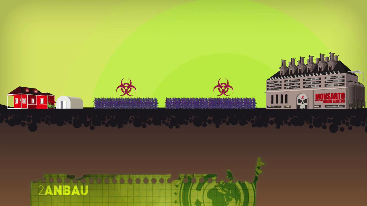 Greenpeace-Video